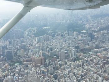 新宿上空 (2).jpg
