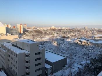 雪景色光が丘.jpg