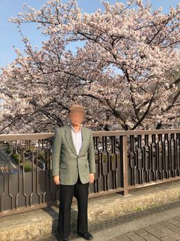 櫻 - コピー.JPG