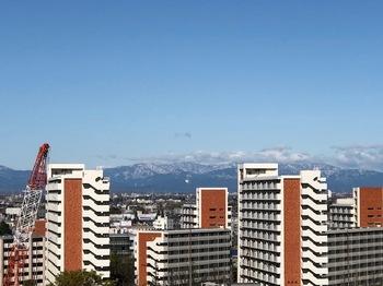 雪化粧秩父連山.jpg